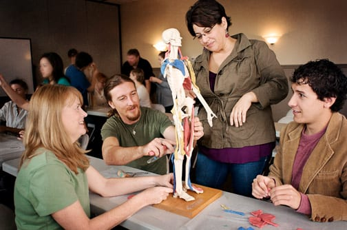 Five Helpful Anatomy Apps For Massage Therapists And Students